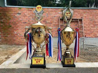 Cup vô địch giải đá gà